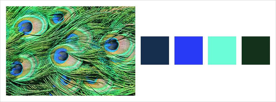 Farbauswahl im Web